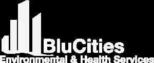 blucities-white-logo-gray-rgb